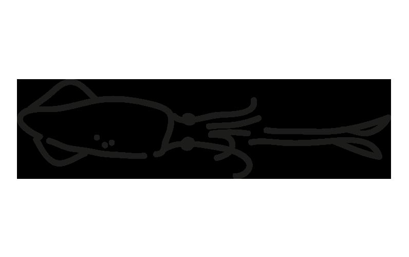producto-ficha-calamar-patagonico_frio-antartic