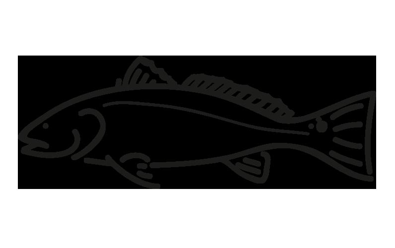 producto-ficha-pez-redfish_frio-antartic